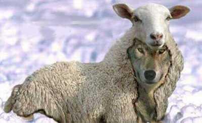 Hay que observar ambas caras del espejo para darse cuenta quien es lobo o Oveja!